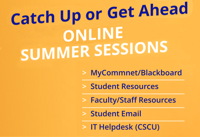 Catch Up or Get Ahead Online Summer Sessions